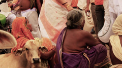 Women beg on a busy street in India. Slow motion. Cows and people pass. Stock Footage