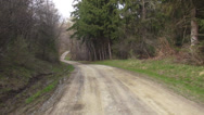 Stock Video Footage of Driving Through Forest, Trees, Transportation