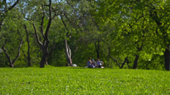 Sunny day in park, people having picnic, relaxing.  Dolly. Stock Footage