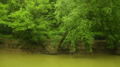 River bank river edge lake kentucky Stock Footage