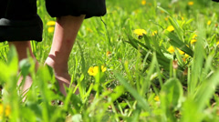 Feet and legs child, Baby's feet in the grass Stock Footage