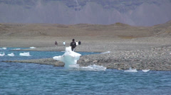 Girl walks on the shore behind a stranded iceberg Stock Footage