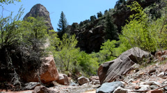 Mountain stream flowing through the wilderness in Zion National Park. Stock Footage