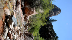 Vertical footage of stream flowing through wilderness in Zion National Park. - stock footage