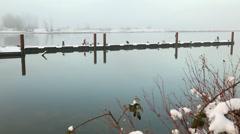 Steveston Harbor, Winter Sportfishermen Stock Footage