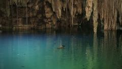 Cenote or natural pit in Yucatan - stock footage