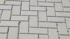 Moving pavement bricks Stock Footage
