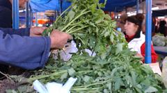 Green tomato plant fresh food market  , fruits and vegetables on market place Stock Footage
