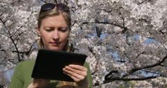 Ultra HD 4K UHD Pan left woman work digital tablet nature blossom flower modern Stock Footage
