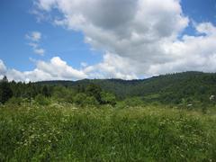 view to carpathian mountains - stock photo