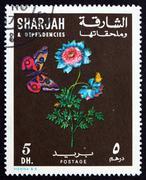 Postimerkki Sharjah 1967 Anemone Kukka ja perhonen, noin 1 Kuvituskuvat