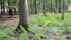 man walking through forest (Tilt/shift) - stock footage