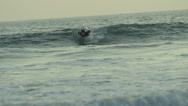 Stock Video Footage of Surfer Riding Wave