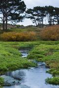 Autumn waterway Stock Photos
