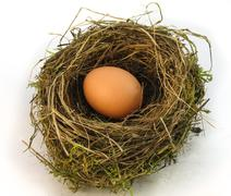 Big nest egg Stock Photos
