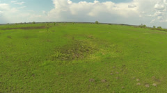 Low over  field. Fly over  green grass. Aerial Stock Footage