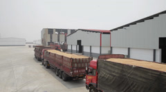 Truck transport wheat in grain reserve depot, Weinan city,  china. Stock Footage