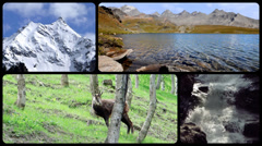 Stock Video Footage of Alps montage. Landscapes, animals and people into the wild.