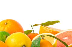 Fruits citrus Stock Photos