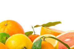 Fruits citrus - stock photo