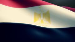 Egypt  Flag Animation Loop - stock footage