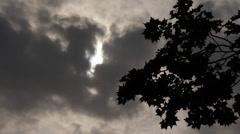 Gloomy Spooky Dark Sky With Trees 1 Stock Footage