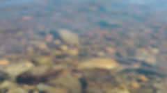Shallow water in and out of focus Stock Footage