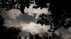 Gloomy Spooky Dark Sky With Trees 2 Stock Footage