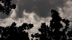 Gloomy Spooky Dark Sky With Trees 3 Stock Footage
