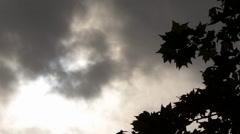 Gloomy Spooky Dark Sky With Trees 5 Stock Footage