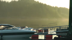 Moored boats late evening sunshine - stock footage