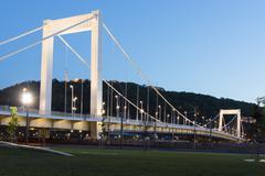 Elizabeth Bridge, Budapest Stock Photos