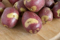 Apache potatoes Stock Photos