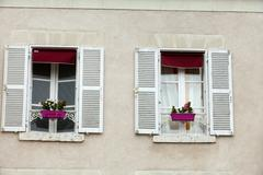 white windows with shutters and flower pot - stock photo