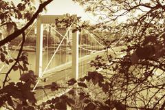 Elizabeth Bridge, Budapest in golden color - stock photo