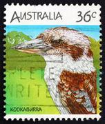 Postage stamp Australia 1986 Kookaburra Stock Photos