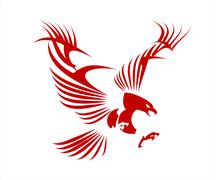 Great Red Eagle, spread out its feather Stock Illustration