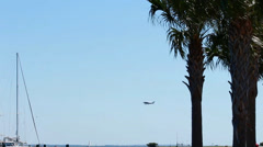 Plane flying behind palm trees and over a pier Stock Footage