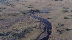 Hippopotamus Savanna River Stock Footage