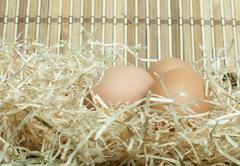 Raw eggs in straw Stock Photos