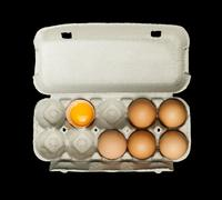 Eggs box and aggs inside Stock Photos