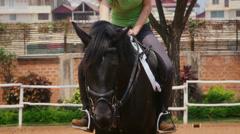 10of12 People in resort enjoying horseback riding, woman, fun Stock Footage