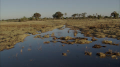 Africa Savanna River Stock Footage