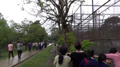 Students/People visiting zoological garden  Imphal, north-east India Stock Footage