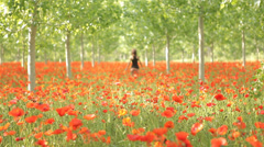 Woman walking away from camera beautiful red field full flowers positive emotion Stock Footage