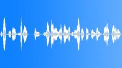 Sheeps Sound Sound Effect