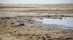 Dry Lakebed 03 HD Stock Footage