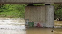 Serbia, 2014. Floods. Swollen river flowing under the bridge, brown, muddy river Stock Footage