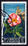 Stock Photo of Postage stamp San Marino 1967 Peony and View of Mt. Titano
