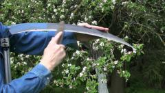 Sharpening scythe tool with stone in spring farm garden Stock Footage